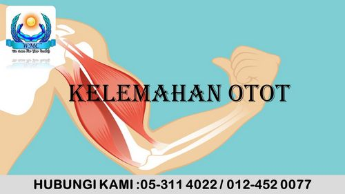Definisi Kehilangan Otot penurunan massa